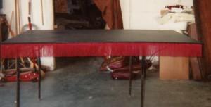 Tiger Auto Trim & Upholstery Sample 10